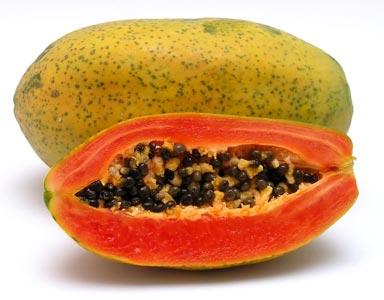 GMO Papaya, Bangkok, Thailand