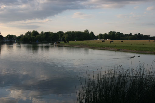 Port Meadow, Oxford